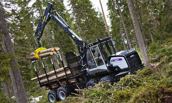 Exploitation foresti u00e8re NB BOIS # Peuplier Bois De Chauffage